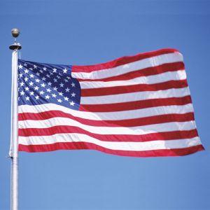 American Flag - 8' w x 5' h